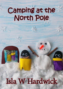 Camping North Pole Postcard